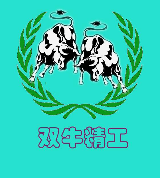 双牛精工数码科技有限公司