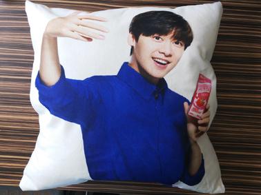 北京抱枕定制 北京抱枕定做 北京广告抱枕