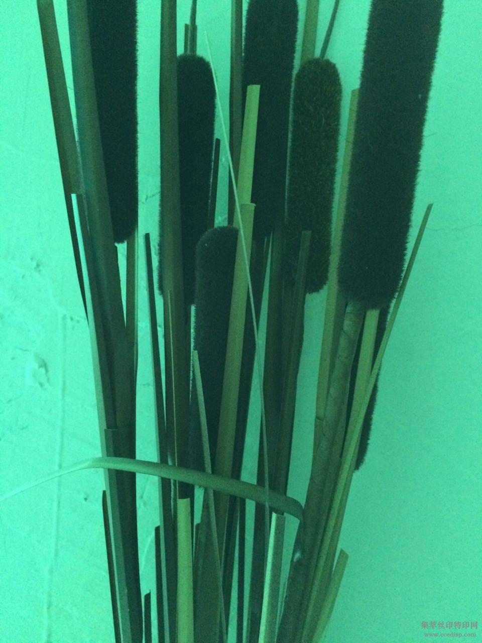 PVC油漆