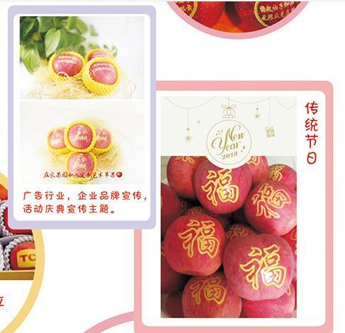水果印字机 厂家销售苹果印刷移印机 圣诞果印字机价格